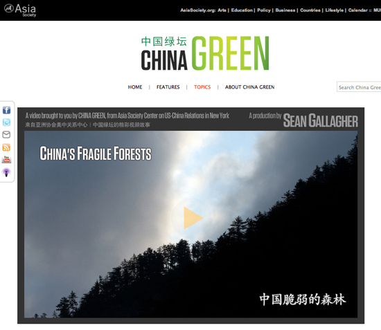 china-green-forests