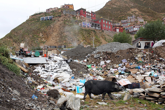 china-water-pollution-sean-gallagher-14