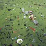 Photographing Jakarta's Severe Water Pollution