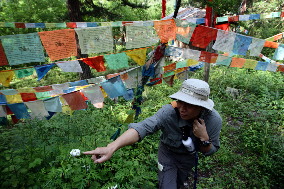 A Jiuzhaigou park warden points out a flower during one of the eco-tours aimed at promoting environmental education and sustainable tourist development.