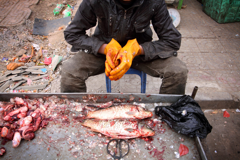 Fish on sale in a small market in the town of Hongsibao in Ningxia Province, central China.