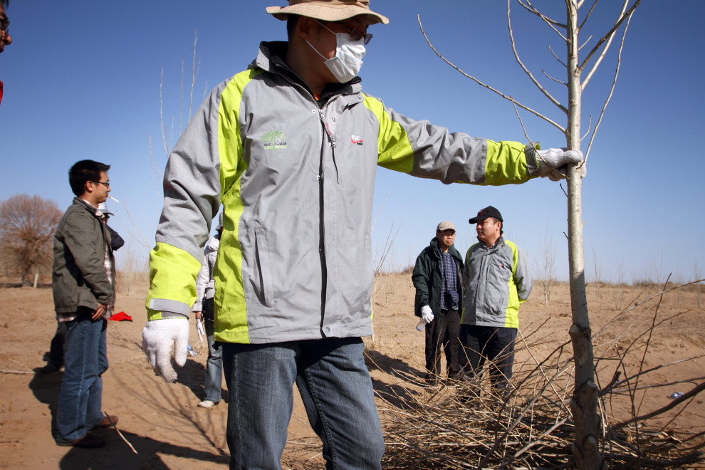 Roots and Shoots volunteers work with local famers to plant tree saplings in Inner Mongolia.