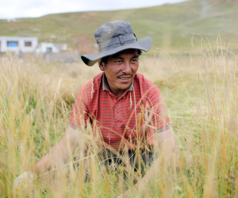 A Tibetan nomad sits in the grasslands of the Amdo region of the Tibetan Plateau.