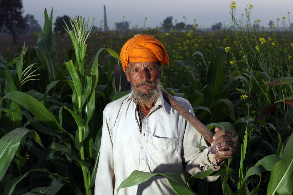 The Silent Fields - Pesticide Poisoning in Punjab - Sean Gallagher