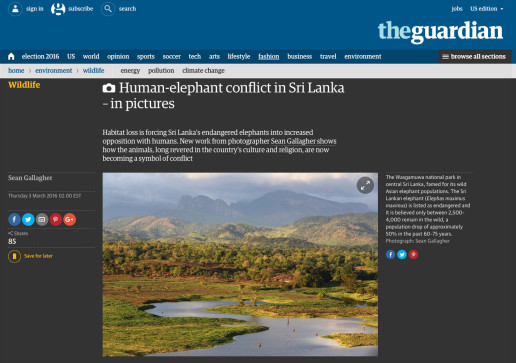 Human-elephant conflict in Sri Lanka – Featured on The Guardian