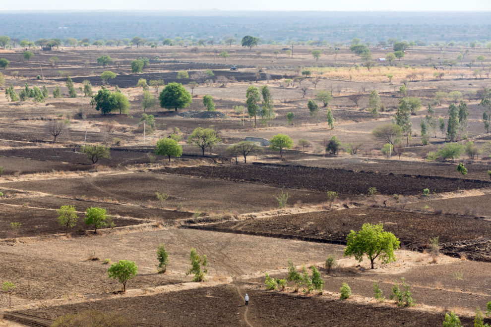 A farmer (bottom-centre) walks across vast swathes of drought-stricken fields near the city of Latur in the Indian state of Maharashtra.