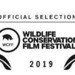 Uncaged Film – Wildlife Conservation Film Festival – Official Selection