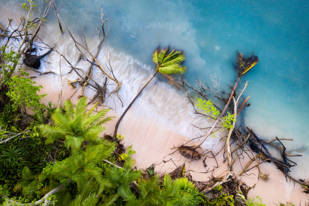 Fallen trees in the shallows of Funafuti atoll, Tuvalu. Erosion of land is an inevitable consequence of life in a coral atoll nation. As sea levels rise and increased threats from storm surges and extreme weather events occur, the land of Tuvalu will increasingly become fragile and prone to erosion.