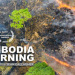 Cambodia Burning – Film