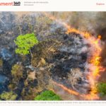 Yale Environment 360 Feature – Turning the Tide on the Relentless Destruction of Cambodia's Forests