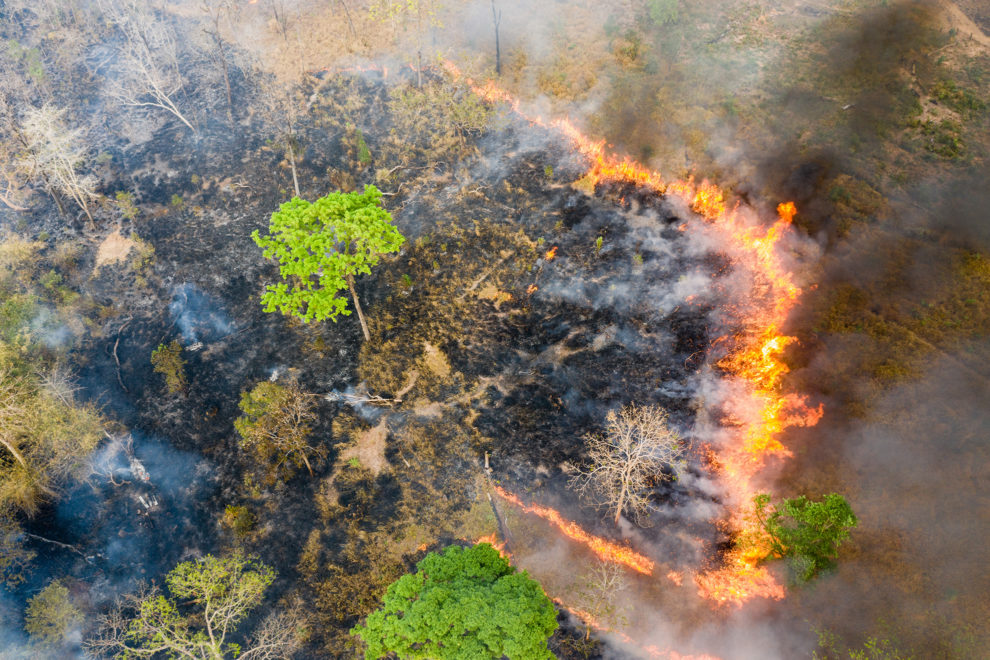 Aerial view of burning land near the Phnom Tnout Wildlife Sanctuary, Preah Vihear Province, northern Cambodia. During the dry season between January to March, hundreds of fires continually  rage across the country. Land is burnt by farmers, loggers and local people looking to either capture wildlife or clear land for agriculture.