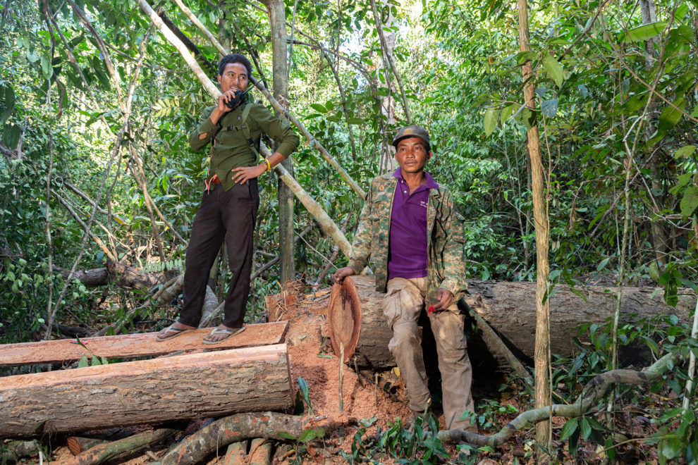 Members of the Prey Lang Community Rangers, a group of local farmers, in the Prey Lang Wildlife Sanctuary, during one of their regular patrols in the forest monitoring illegal logging. Prey Lang is one of Asia's most threatened evergreen woodlands, totalling over 3,500 square kilometres in size. Illegal logging and clearance of forest for agriculture continue to threaten the last remaining pockets of forest in central Cambodia.